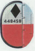 456th BG insignia